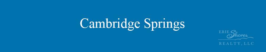 Cambridge Springs area banner