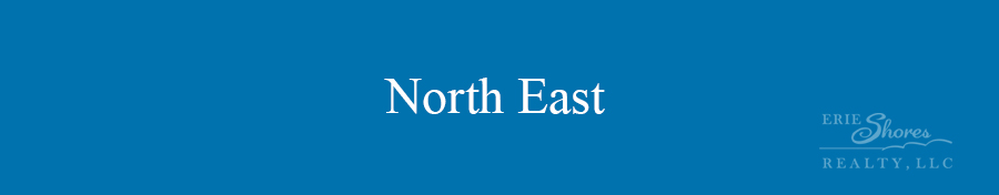 North East area banner
