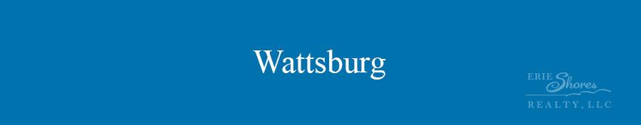 Wattsburg area banner